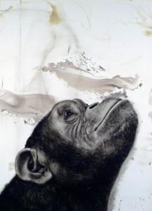 Juan Perdiguero - Chimp Kopf 1