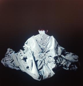 """Cecilia Paredes. """"Dorsal"""" (2014). Impresión sobre papel fotográfico y caja de luz."""