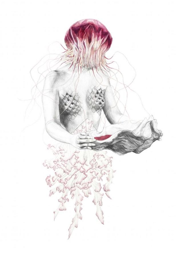 Elisa Ancori 01 - Jellyfish III Lapiz y acuarela sobre papel