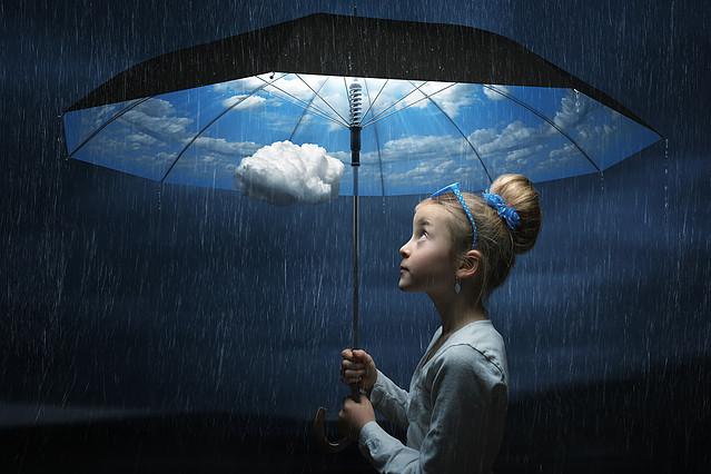The Wood weather umbrela